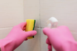 how to clean mold without bleach