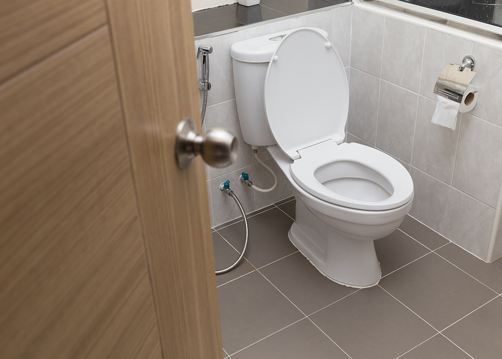 how do toilets work
